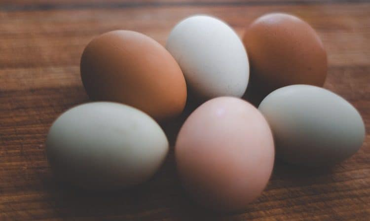 Meaning of Dreaming of Eggs [ Fried, Cooked, Etc,     ] - MisticaWeb